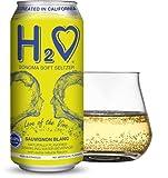H2O (New Vintage) The World's First California Wine-Infused Sparkling Refreshment, 0.0% Non-Alcoholic (Sauvignon Blanc)