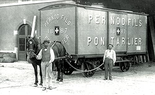 Pernod Anis Schnaps - 4