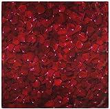 BONRI Juego de 2 servilletas de Tela de pétalo de Flor de Rosa roja con Estampado Floral del día de San Valentín, servilletas de poliéster Lavables para la Cena para la Mesa de Comedor, banqu 20'X20'