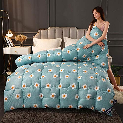 CHOU DAN Duvet King Size,Quilt Winter Quilt Core Thickened Warm Winter Double Spring And Autumn Cotton Quilt Single Student Dormitory-6_180*220cm-8 Kg