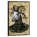 artboxONE Poster mit schwarzem Rahmen 45x30 cm Tiere Ziege