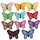 saizone 11 PCS Bunte Bestickte Schmetterlings Aufbügeln, DIY Applique Bekleidungsstoff Zubehör, für Kleidung Kleid Plant Hat Jeans