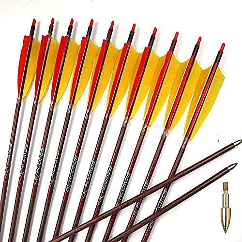 """ACCMOS 12 Stück 32 Zoll Holzhaut Carbon Pfeile Wirbelsäule 400 450 500 600 700 mit 5""""Truthahnfeder für 20-50 lbs Langbogen Recurve Bogen Jagd Bogenschießen (Spine 700)"""