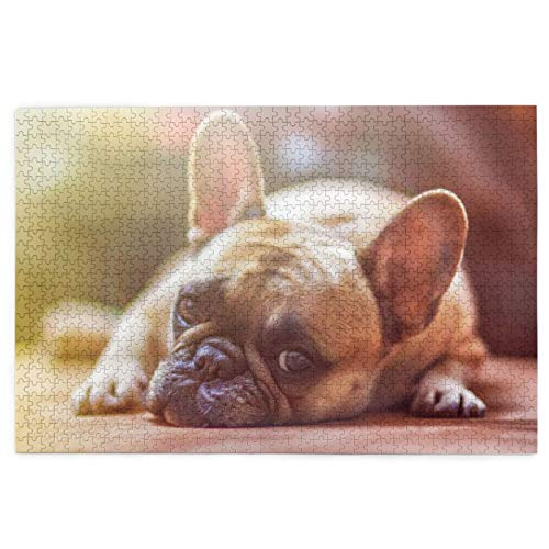 French Bulldog Love 1000 Piece Puzzle - Large, 29.5 X 19.7 Jigsaw Puzzle Game Toys for Adults & Teens