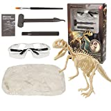 REDO Juguetes de excavación arqueológica de dinosaurios, kit de excavación fósil de esqueleto de dinosaurio, juguetes educativos para niños, el mejor regalo para niños y niñas (tiranosaurio)