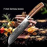 Cocina del cocinero del cuchillo de Damasco hueso cuchillo for uso VG10 Japón Malasia cocina cuchillo for uso profesional de la manija de Micarta del cuchillo de cocina Herramientas de cocina