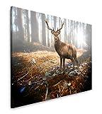 Paul Sinus Art Rehbock im Wald 120x 80cm Inspirierende