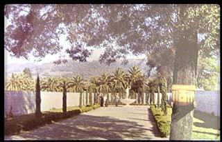 Italian Swiss Colony Winery - Asti - California c1960 Postcard