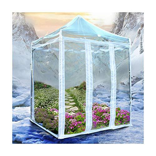 GDMING Plegable Impermeable con Transparente Paredes Laterales, Exterior Impermeable Tarea Pesada Mantener Caliente Cubiertas De Plantas, 6 Tamaños (Color : Claro, Size : 2x3m)