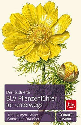 Der BLV Pflanzenführer für unterwegs: 1150 Blumen, Gräser, Bäume und Sträucher