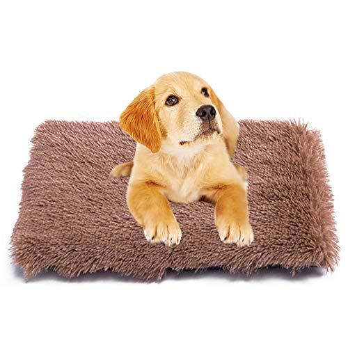 Vejaoo Qualität Plüsch Decke Exquisite Mat Warm and Soft Haustiere Bett for Kleine/mittlere/große Hunde XZ008 (L(50 * 70CM), Khaki)