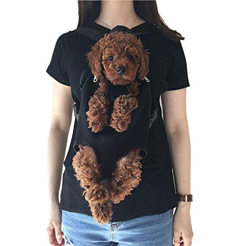 Wiiguda : Transportín frontal para mascotas  mochila para perros y gatos  patas fuera