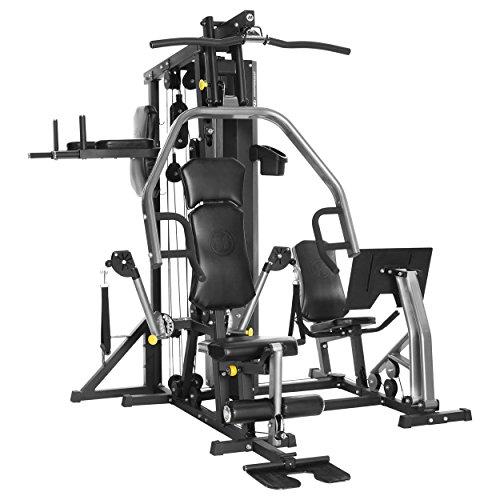 Multiestación semiprofesional de musculación Horizon Fitness Torus 5