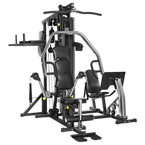 Horizon Fitness Multi-Station Torus 5