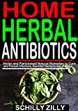 HOME HERBAL ANTIBIOTICS: Herbs and Plant-Based Natural Remedies to Cure and Prevent infections, Resistant Bacteria and allergies. (English Edition)