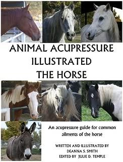 Animal Acupressure Illustrated The Horse