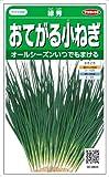 【種子】ねぎ 緑秀小ネギ 15ml