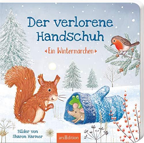Der verlorene Handschuh: Ein Wintermärchen