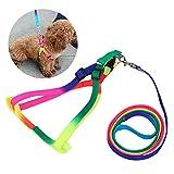 ZZZBF Cable Cuerda Perros - Cuerda De Tracción Pequeña Mediana Cofre Colorido Cinturón Tracción Posterior Gato Antidesgaste 1.0 * 120cm/Color