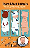 Learn about Animals: Activity Book with Word Searches, Number Puzzles, and Much More: Use snippets of information, word searches, and other games created ... world (Free Time Fun 5) (English Edition)