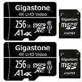 Gigastone Scheda di Memoria Micro SDXC da 256 GB e Adattatore SD, Set da 2, A1 U3 4K, Fino a 100 MB/s di...
