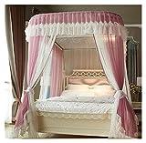 SRQOESFF Moskitonetz Moskitonetz mit Rahmen Romantisches Doppelschicht Bett Baldachin dreitüre Home textils dekor bettdeckelvorhang (Color : Gray, Size : 2.0m (6.6 feet) Bed)