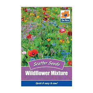 Wildflower Mixture (Scatter Seeds)