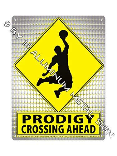 Retro Schilder von J E Matrix Monster Slam Prodigy Metallschild Basketball Sport Jungen Zimmer Wanddekoration 743
