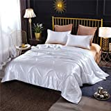 NTBED Silky Satin Comforter Set Queen White Luxury Microfiber Smooth Sexy Quilted Bedding Set for Summer Spring Autumn