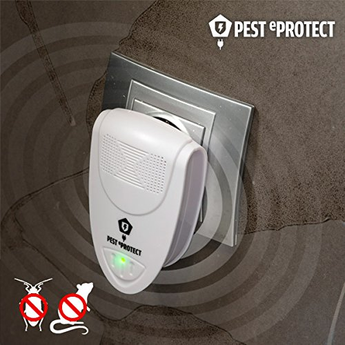 qtimber Ahuyentador Pest eProtect Mini 7 x 10.5 x 7 cm lampada anti zanzare, candela insetticida