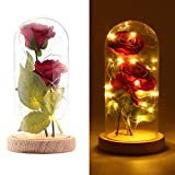 ONEVER Beauty and The Beast Rose Set, Enchanted Silk Red Roses in Glass Dome with LED Fairy String Lights Wooden Base for Wedding Anniversary Valentine's Day Mother's Day Home Decor Party Supplies