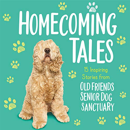 Homecoming Tales: 15 Inspiring Stories from Old Friends Senior Dog Sanctuary