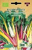 Germisem Orgánica Rainbox Mix Semillas de Acelgas 3 g (ECBIO7026)