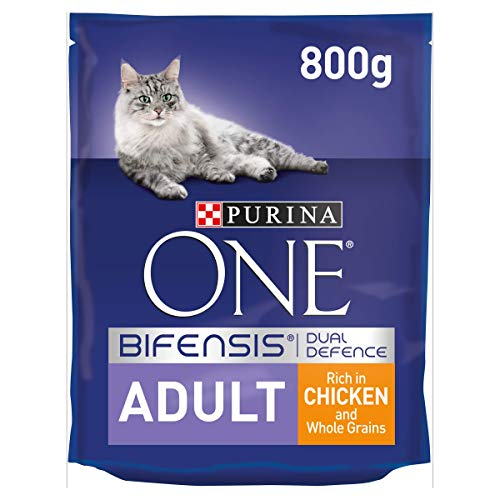 Purina ONE Adult Dry Cat Food Chicken & Wholegrains 800g