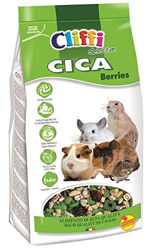 CICA Berries 800g per CAVIE, CINCILLÀ, Degu E Cani della PRATERIA