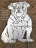 Edelrost Hund Englisch Bulldogge Höhe 30 cm , Bully, Edelrost Hund, Gartenfigur, Rostfigur, Rost Figur
