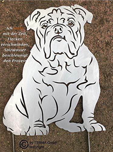 Terma Stahldesign Englisch Bulldogge höhe 30 cm, Bully, Edelrost Hund, Gartenfigur, Rostfigur, Rost Figur