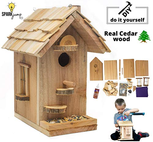 SparkJump Birdhouse Craft Kit | Premium Cedar Wood for Outside | Bird Feeder | Kids Arts and Crafts | DIY Woodworking Building Project for Boys, Girls, Adults, Family