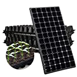 Best Budget Product: Iume 72 Cell Seedling Trays