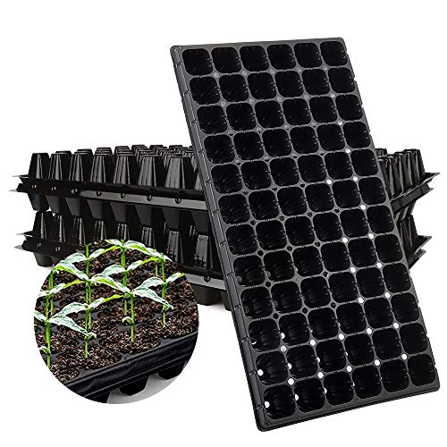 cells to grow plants