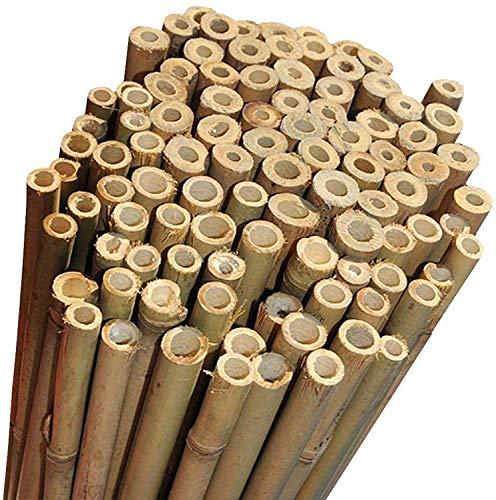 Canne di Bambu' Restenti e Naturali - Per Sostegno Ortaggi e Piante o Arredamento di design - Ideali per Pomodori, Rampicanti e per il tuo orto - Canna Bamboo (10 PEZZI - h.210cm / Ø18-20mm)
