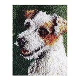 TrusMe 20.5X15 Inch Knüpfteppich Kit American Flag Häkeln Teppich Teppich Garn Sofakissen Mat DIY Teppich Teppich Wohnkultur Kunst & Handwerk,F
