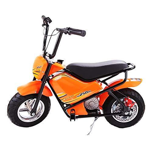 Yedina Kinder Motorrad 24 v Fahrrad Batterie Power für Jungen und mädchen elektrische Motorrad Spielzeug reiten Pedal Langlauf Ausbildung hilfs Rad elektrische (Farbe optional)*
