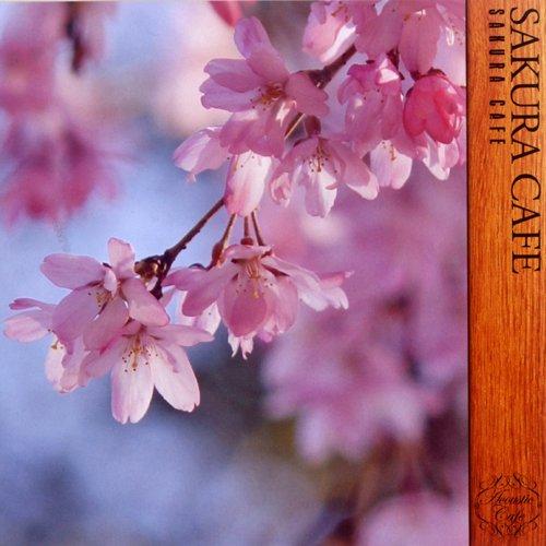桜カフェ ~SAKURA CAFE~