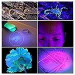 Simply Plus Black Light UV Flashlight, 51 LED Ultraviolet Black Light For Urine Detection For Pet Urine 10