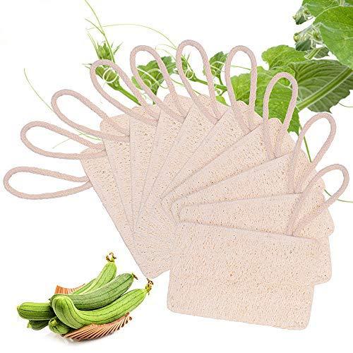 EKKONG 10 Pezzi Luffa Spugna,Naturale Sponge da Cucina Eco,Spugna Scrubber Spazzola di Luffa,Scrub Biologico Biodegradabile A Zero Sprechi (7 * 11 cm)