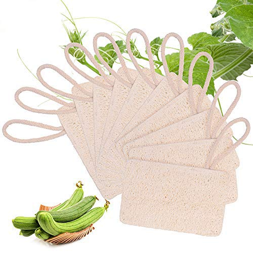 10 Piezas Loofah Esponja, Loofah Para Lavar Platos, Natural