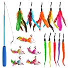 16 PCS Funny Cat Kit Retractable Funny Cat Stick with 5 Caterpillar Cat Toys & 5 Feather & 5 Mouse Replaceable Cat Toys with Bell and Cat Wand