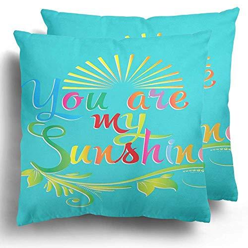 Throw Pillow Case Pack de 2 You Are My Sunshine Vintage caligráfico Letras Coloridas Amor poliéster cojín Funda de Almohada sofá decoración del hogar
