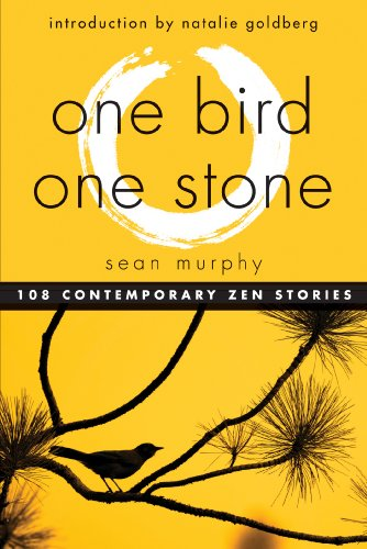One Bird, One Stone: 108 Contemporary Zen Stories (English Edition)